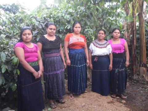 photo of Grupo Agrícola Pajoca Sur 1 Group