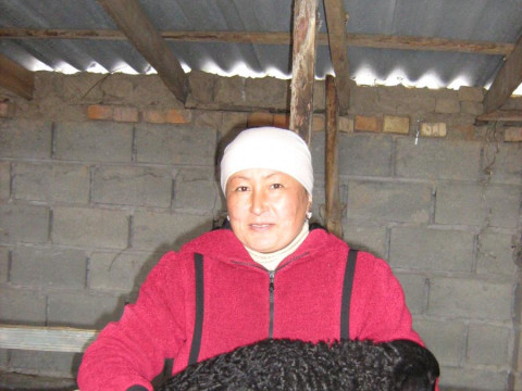 photo of Sonaiym