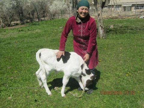photo of Satkyn