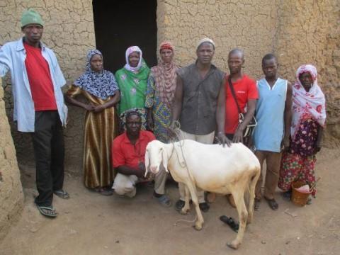 photo of Sinignesigui Group