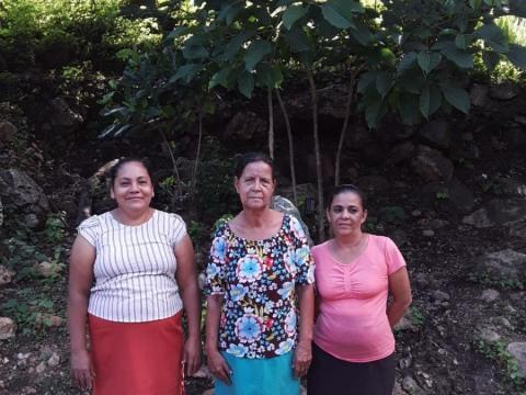 photo of Renacer- Gamalote Group