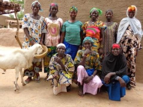 photo of Benkadi N°I Group