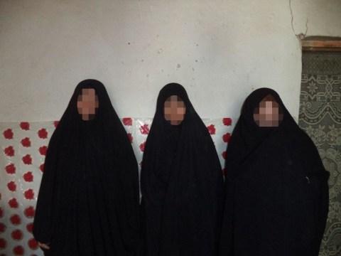 photo of Amal's Group