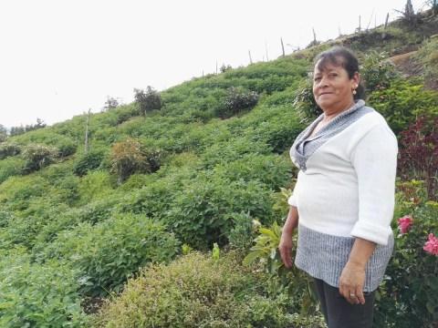 photo of Maria Graciela