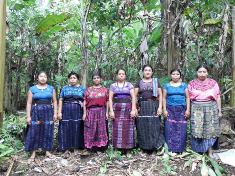 photo of Grupo Pajoca 3 Group