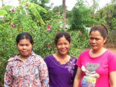 photo of Savy's Group