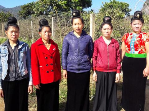 photo of Van's Group