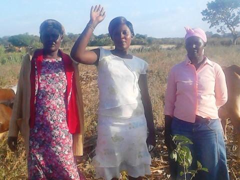 photo of E Chami Women Group