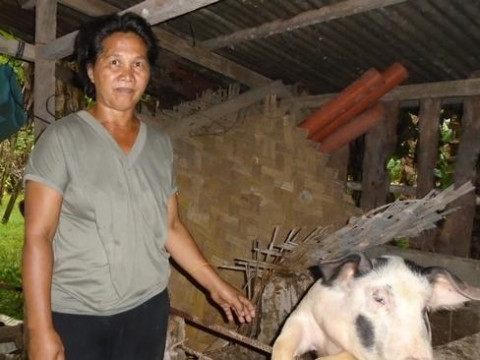 photo of Amelita