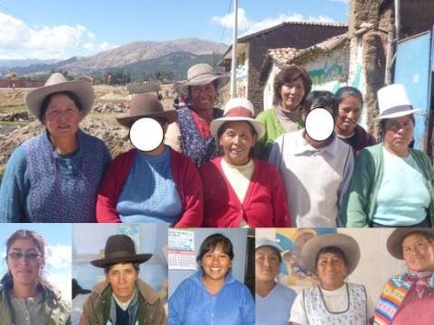 photo of Los Girasoles De Compone Group