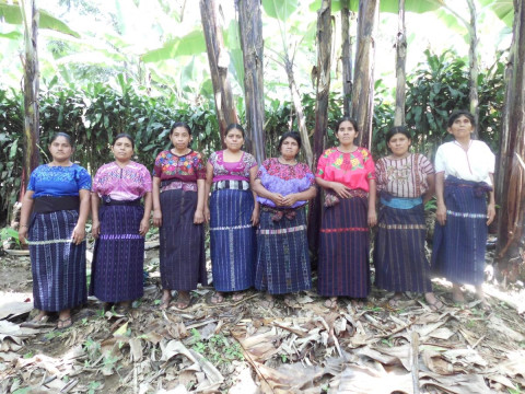 photo of Yoxaja 4 Group