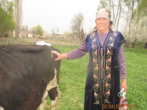 photo of Syrgabubu
