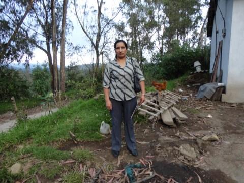 photo of Luz America