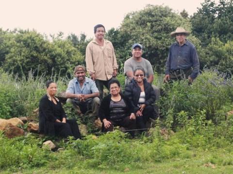 photo of Patamban Group