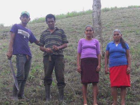 photo of Solución- La Jova Group