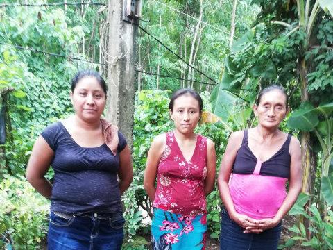 photo of Grupo Divino Niño Pajales Group