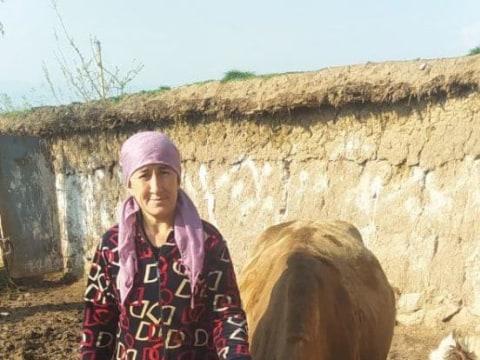 photo of Mohgul