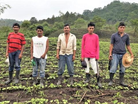 photo of Los Apanajes Group