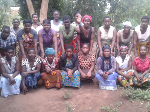 photo of Namadzi Group