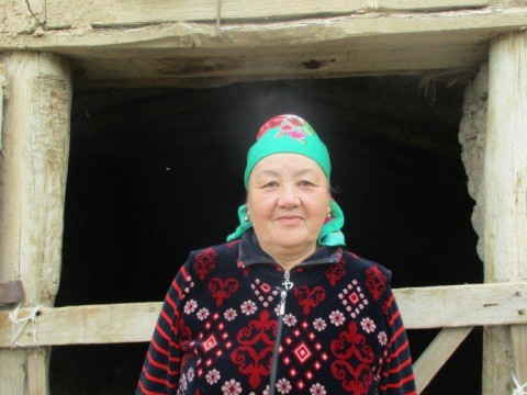 photo of Chinar