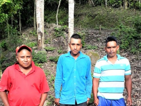 photo of Productores San Pedro Group
