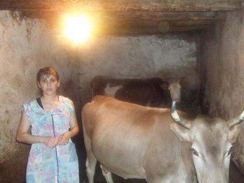 photo of Meri