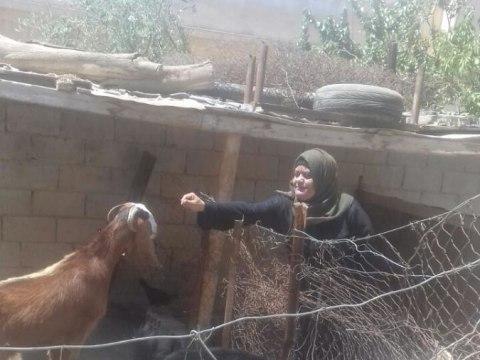 photo of Hana'a