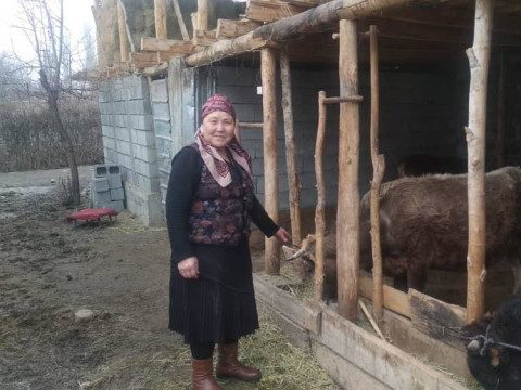 photo of Oktomkan