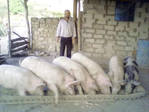 photo of Sahak