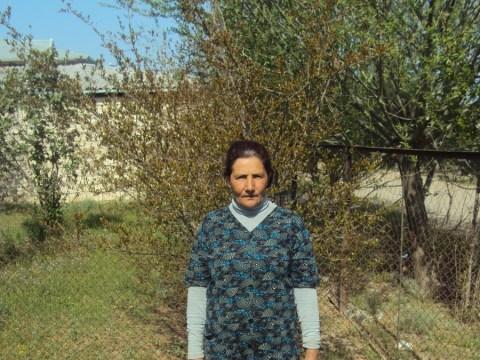 photo of Alamzar