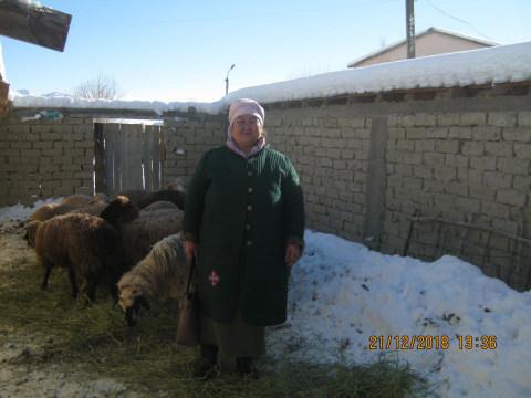 photo of Kulmira