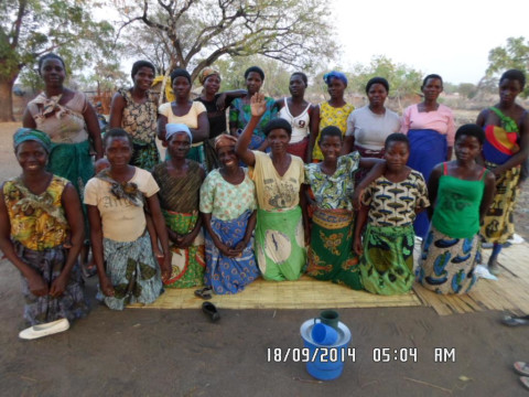 photo of Zatonse Group