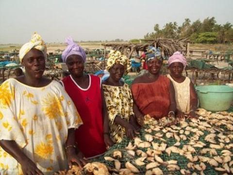 photo of Mbokatoor Group