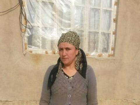 photo of Aminamo