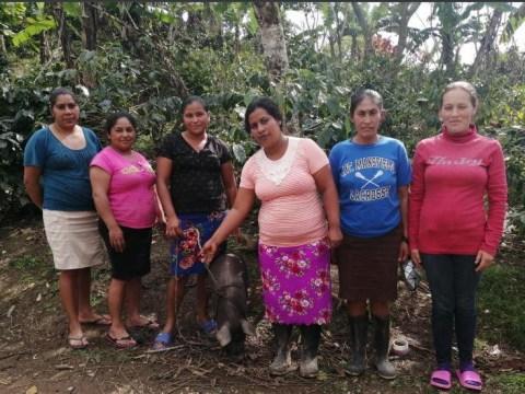 photo of Las Cinco Rosas Group