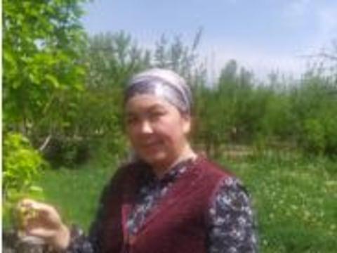 photo of Zharkynai