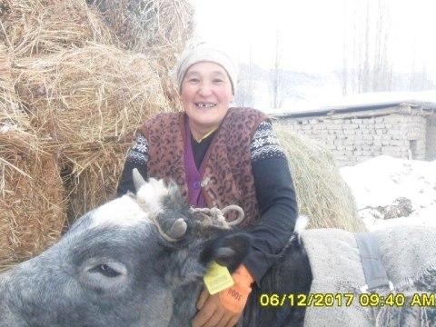 photo of Burulkan