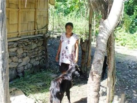 photo of Alcina
