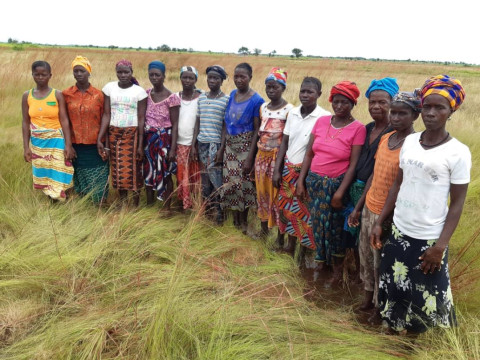 photo of Memunatu's Female Farmers Group
