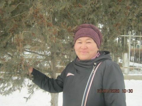photo of Kulbaira