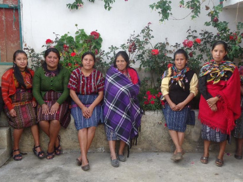 photo of Flor Chicualense Group