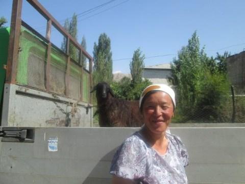 photo of Meyizgul