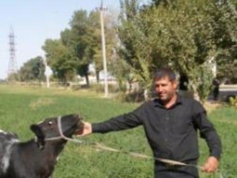 photo of Boymakhmad