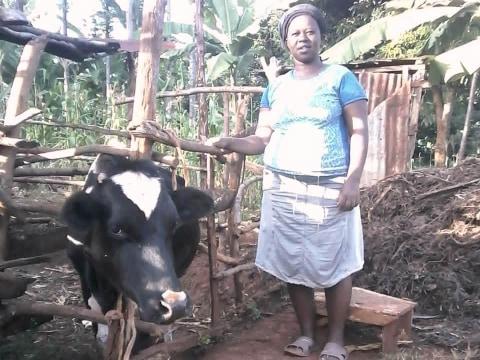 photo of Liberia