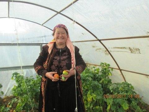 photo of Nursiya