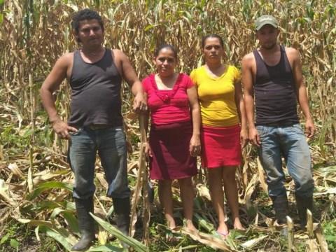 photo of Los Productores- El Jiquelite Group