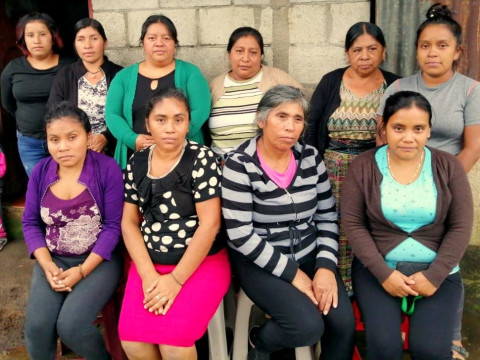 photo of Violetas De San Francisco Group