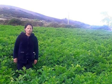 photo of Fanny Patricia