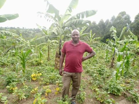 photo of Kabari