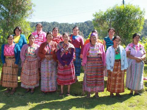 photo of Campamento Group